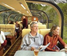 Alaska Train Tour Cruise for Unforgettable Trips
