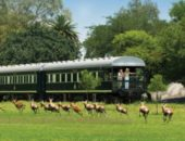 Learn About Train Travel in South Africa