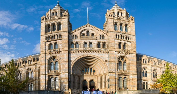 Visit the Natural History Museum