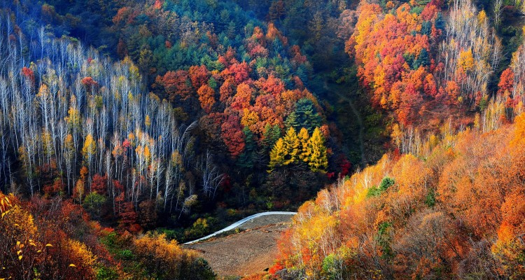 Gangwon Province, South Korea