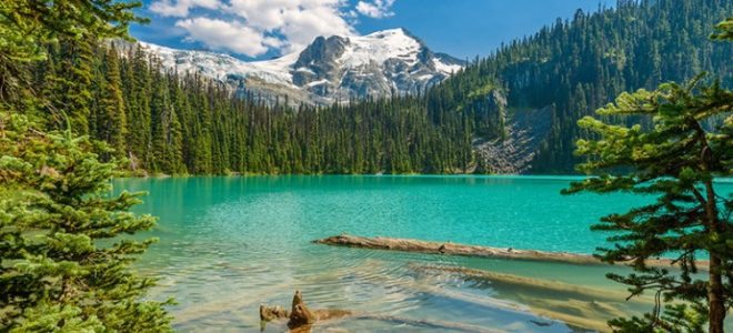 Things To Do In Whistler This Summer